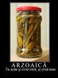 arzoaica