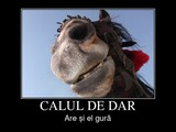 calul de dar