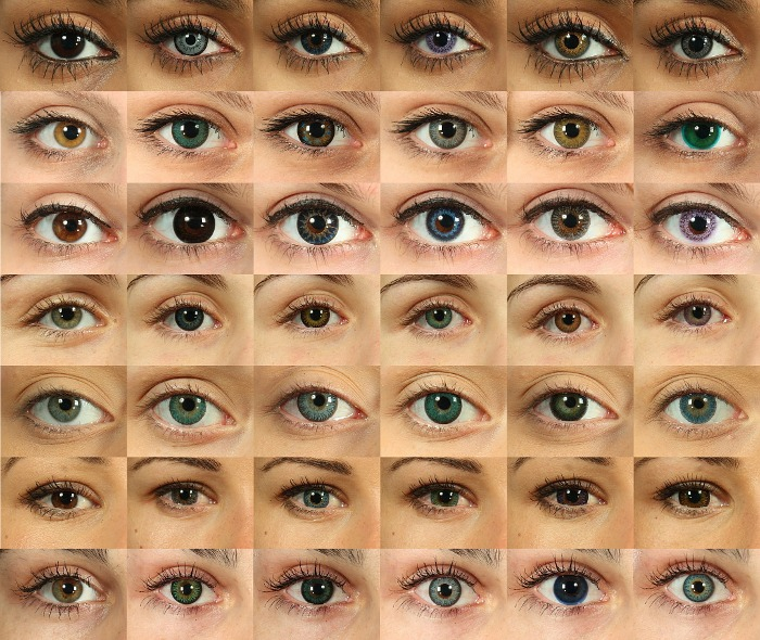 lot of eyes