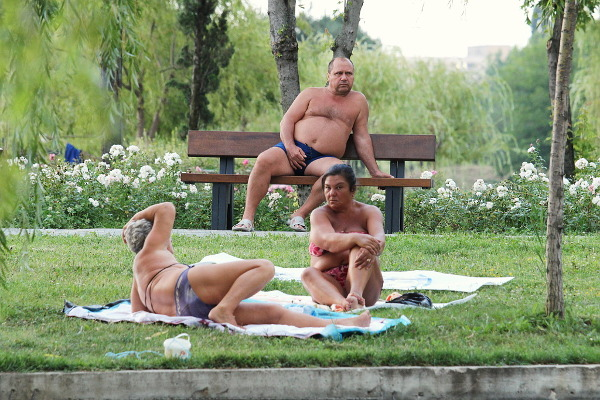 sunbathing in the park