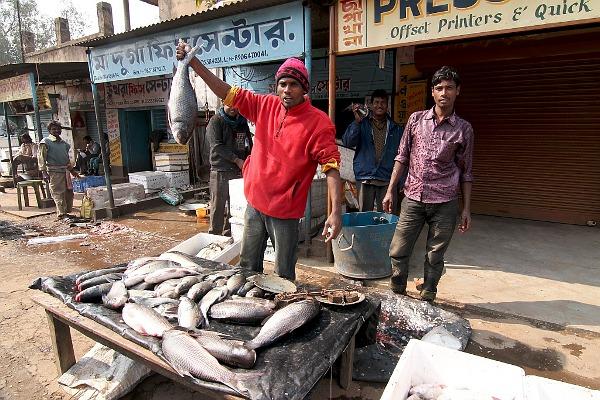 fishmongers