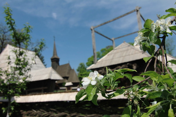 village spring