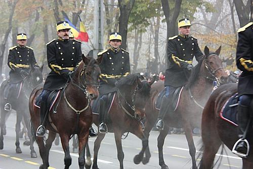 December 1st: Cavalry