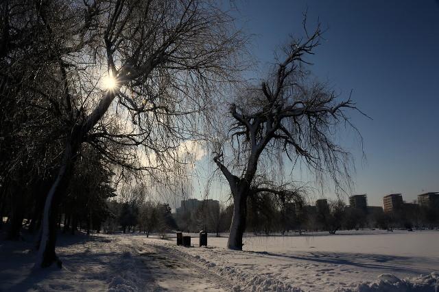 surreal winter