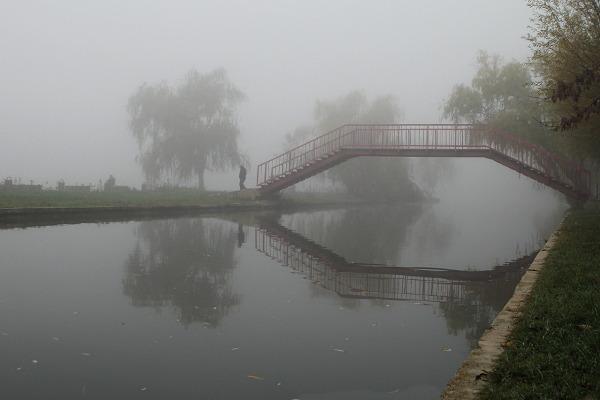 mist people