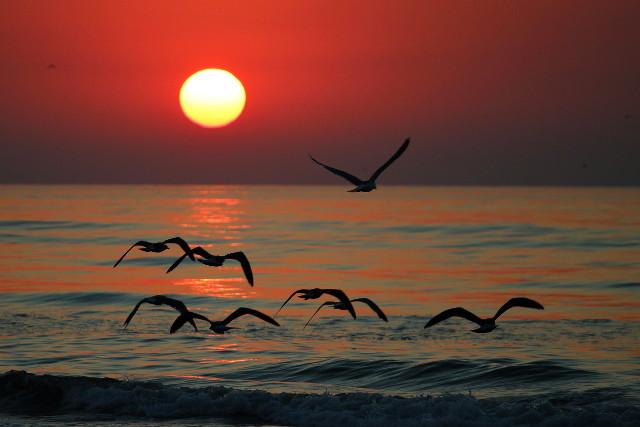obligatory sunrise