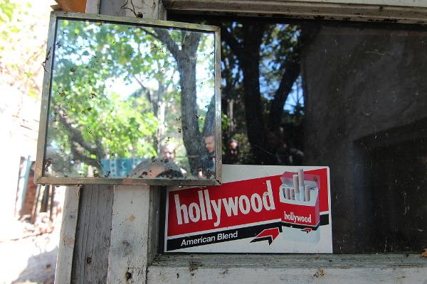 dream of hollywood