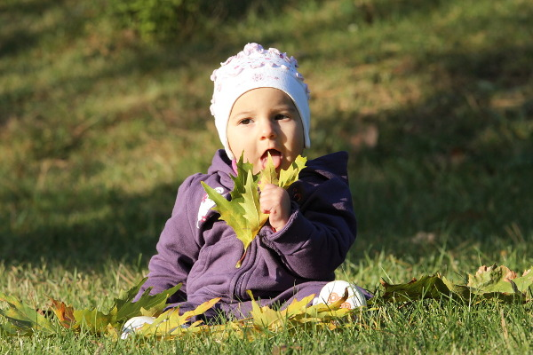 baby and the leaves